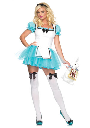 Enchanted Alice In Wonderland Sexy Costume