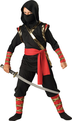 Boys Warrior Ninja Kids Costume