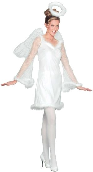 Womens Heaven Sent Adult Angel Costume