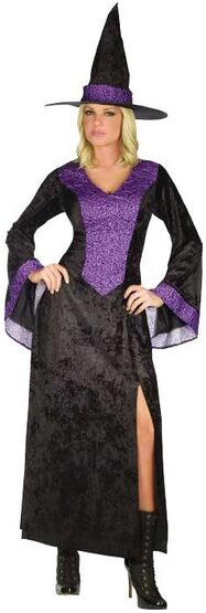Womens Adult Purple Rose Witch Costume