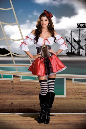 Plunder Down Under Sexy Pirate Costume