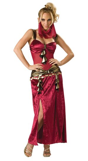Womens Egyptian Desert Dancer Costume