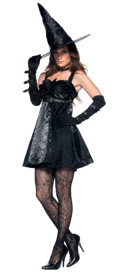 Spellbound Sexy Witch Costume