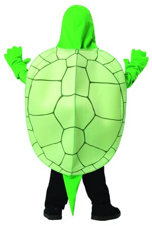 Boys Terrific Turtle Funny Animal Kids Costume