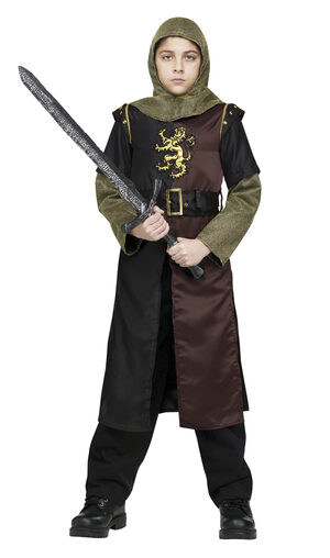 Medieval Valiant Knight Kids Costume