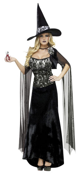 Love Potion Witch Adult Costume