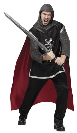 Mens Medieval Knight Adult Costume