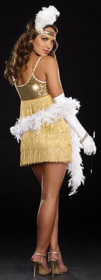 Sexy Vaudeville Vixen Flapper Costume