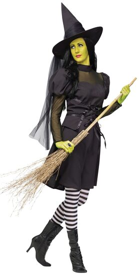 Miss Wicked Witch Adult Costume