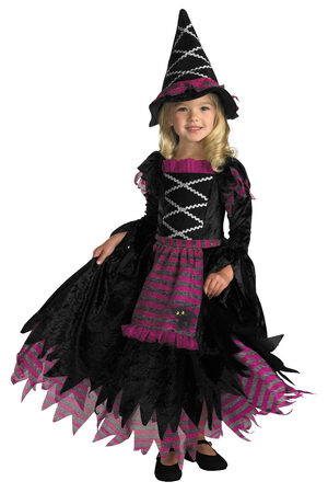 Girls Fairytale Toddler Witch Costume