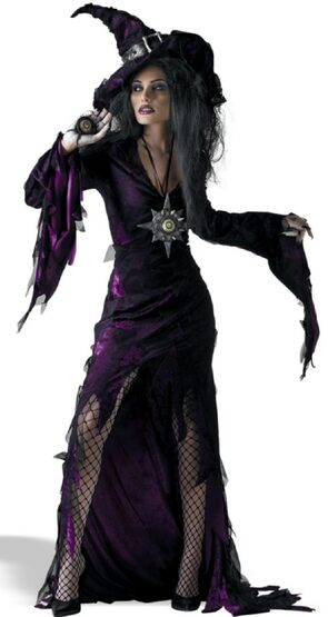 Sorceress Sexy Witch Costume