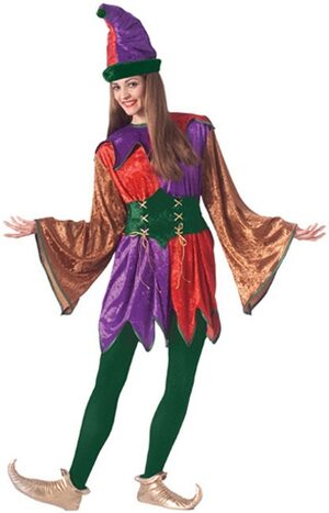 Female Renaissance Jester Adult Costume