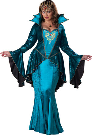 Mysterious Medieval Queen Plus Size Costume