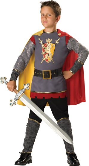 Loyal Medieval Knight Kids Costume