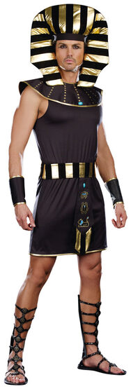 Pharaoh King Egyptian Adult Costume