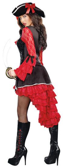 Sexy Treasure Pleasure Pirate Costume
