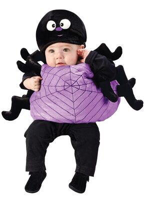 Itsy Bitsy Silly Spider Baby Costume