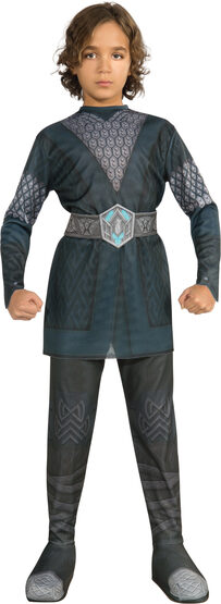 LOTR Dwarf Leader Thorin Kids Costume