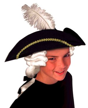 Childs Colonial Historic Hat with Wig