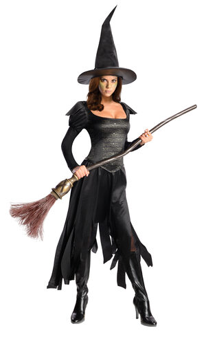 Oz Wicked Witch of the West Teen Costume