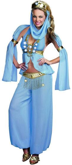 Sexy Arabian Belly Dancer Harem Hottie Costume