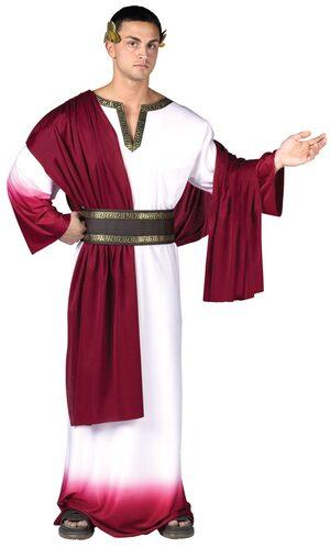 Mens Deluxe Caesar Adult Roman Costume