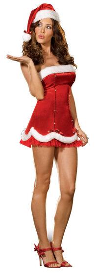 Holiday Honey Sexy Santa Costume