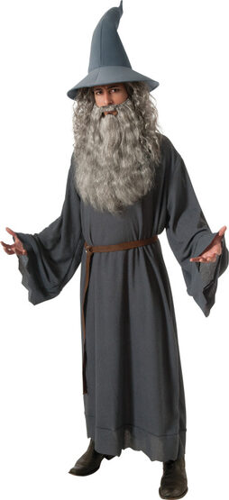 Mens Gandolf LOTR Wizard Adult Costume