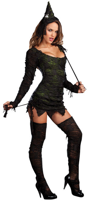 Sexy Wonderfully Wicked Witch Costume Mr Costumes