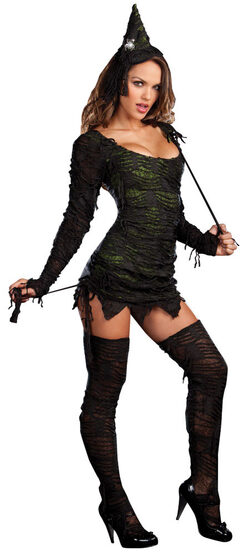 Sexy Wonderfully Wicked Witch Costume
