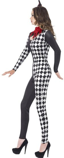Harlequin Jester Clown Adult Costume