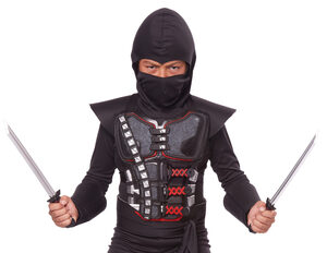 Stealth Ninja Battle Armor