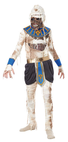 Pharaoh's Revenge Kids Costume