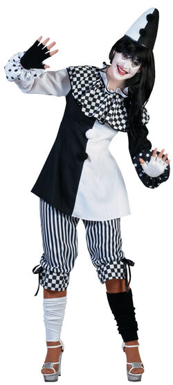 Court Jester Clown Adult Costume