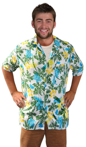 Funny Hawaiian Tourist Shirt Adult Costume