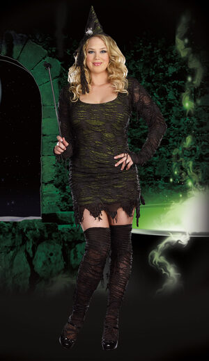 Wonderfully Wicked Witch Plus Size Costume