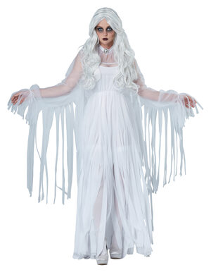 Ghostly Spirit Adult Costume
