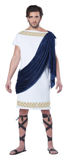 Glorious Grecian Toga Adult Costume