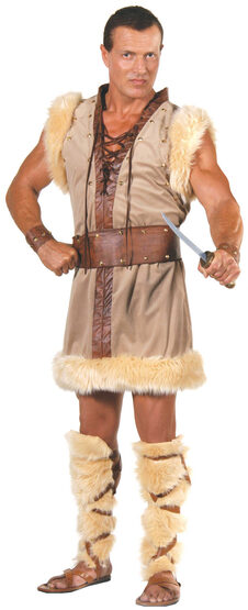 Mens Barbarian Viking Adult Costume