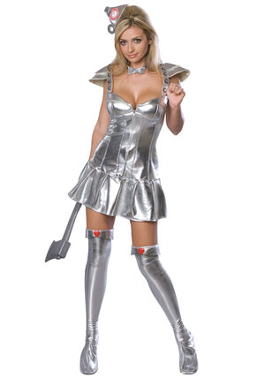 Secret Wishes Tin Woman Sexy Costume
