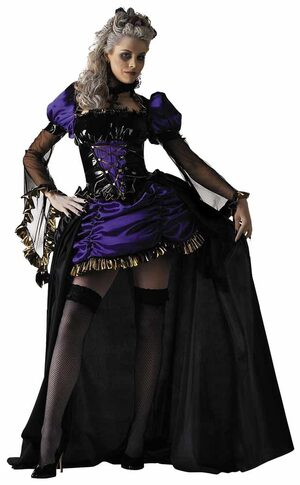 Lady In Waiting Gothic Adult Costume