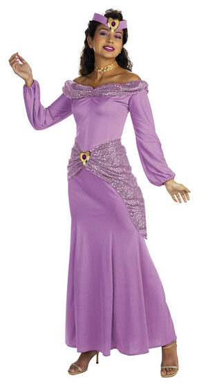 Prestige Adult Disney Princess Jasmine Costume