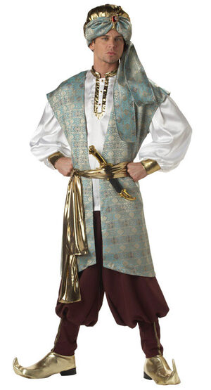 Sultan Adult Costume