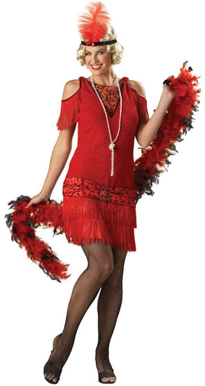 Adult 20s Flapper Dress Costume