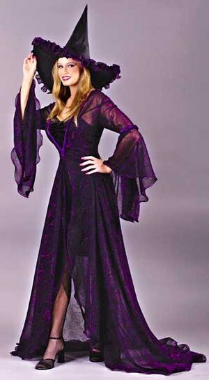 Womens Shimmering Rose Adult Witch Costume