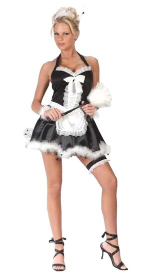Neat and Sweet Sexy French Maid Costume