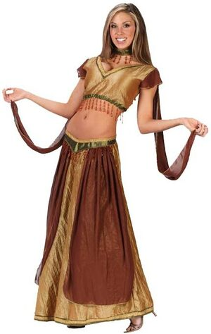 Womens Belly Dancer Adult Costume