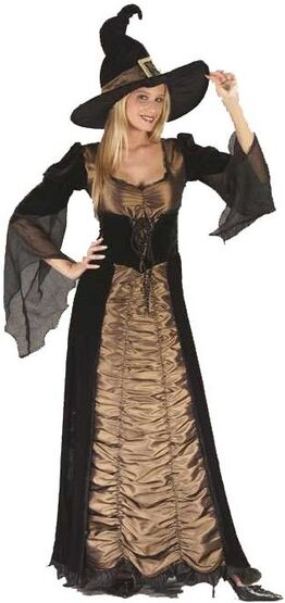 Womens Adult Elegant Coffin Witch Costume