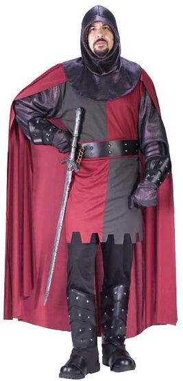 Mens Valiant Knight Adult Medieval Costume
