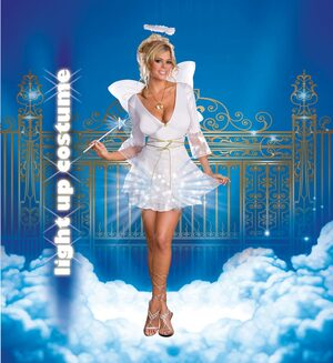 Heavenly DeLIGHT Sexy Angel Costume